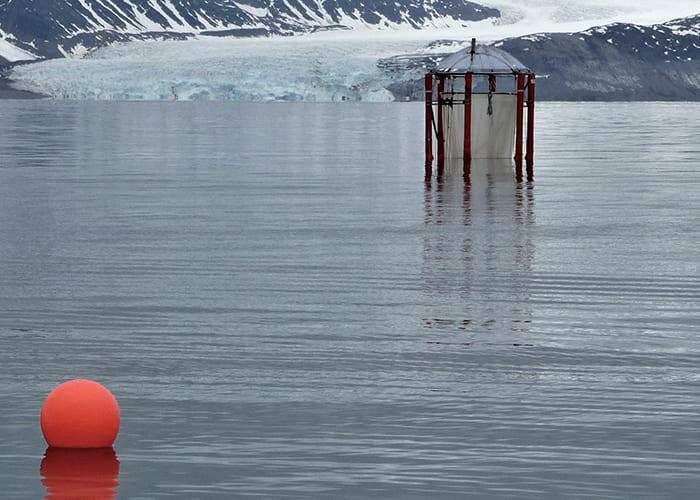 Mesokosmen für die Meeresforschung